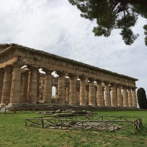 Temple Neptune 3